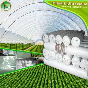 Plastik UV Lokal Merk Hercules