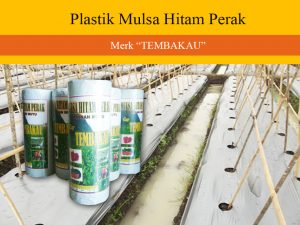 produsen plastik mulsa