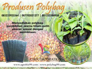 Jual Polybag Murah