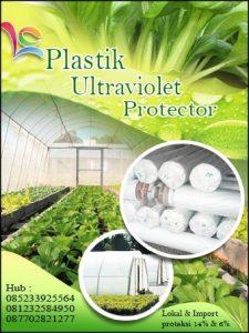 Platik Ultraviolet import