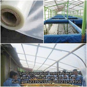 Plastik uv untuk atap kolam ikan